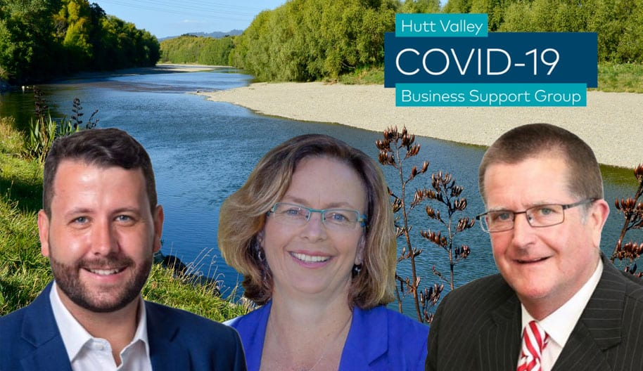 - Covid19 Business Support Group feature - Hutt Valley Covid-19 Business Support Group Established